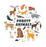 Gli animali e gli uccelli selvaggi della foresta hanno sistemato nel cerchio Progettazione della copertura di vettore Fotografie Stock Libere da Diritti