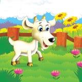 Gli animali felici sull'azienda agricola Fotografie Stock