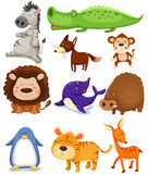 Gli animali selvatici hanno impostato Immagini Stock