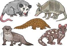 Gli animali selvatici hanno messo l'illustrazione del fumetto Fotografie Stock Libere da Diritti