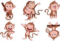 Gli anni della scimmia Insieme della scimmia Fotografia Stock Libera da Diritti