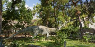 Gli anni giurassici/171-161 milione Omeisaurus-medi fa Nel D Immagine Stock Libera da Diritti