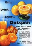 gli anni 50 Outspan le arance ed il manifesto del pompelmo Immagine Stock