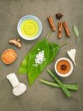 Gli avocado va con la curcuma degli ingredienti della stazione termale della natura, COM di erbe Fotografia Stock Libera da Diritti