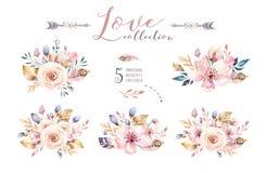 Gli elementi d'annata stabiliti dell'acquerello di Boho dei fiori, del giardino e dei fiori selvaggi, foglie, si ramifica fiore,  illustrazione vettoriale