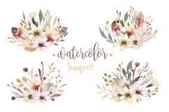 Gli elementi d'annata stabiliti dell'acquerello di Boho dei fiori, del giardino e dei fiori selvaggi, foglie, si ramifica fiori,  Fotografia Stock Libera da Diritti