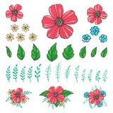 Gli elementi floreali per creano le vostre composizioni Fotografia Stock Libera da Diritti