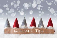 Gli Gnomi, fondo d'argento, Bokeh, stelle, Geschenk Tipp significa la punta del regalo Fotografia Stock