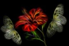 Gli ibischi rossi luminosi fioriscono con due farfalle gialle Fotografie Stock Libere da Diritti