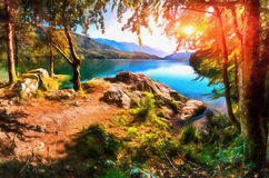 Gli impianti nello stile della pittura dell'acquerello Scommessa del lago mountain Immagini Stock Libere da Diritti