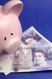 Gli inglesi venti martellano le note con il porcellino salvadanaio - verticale. Immagini Stock Libere da Diritti