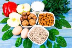 Gli ingredienti dei piatti che contengono vitamina E Una dieta sana fotografie stock