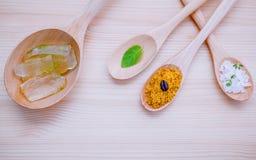 Gli ingredienti per cura di pelle alternativa e casalingo sfrega l'aloe v Fotografia Stock