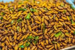 Gli insetti fritti, insetti hanno fritto sull'alimento della via in Tailandia immagine stock libera da diritti