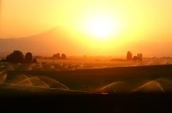 Gli insiemi del sole su terreno coltivabile Fotografia Stock Libera da Diritti
