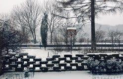Gli inverni abbelliscono dalla propria iarda del giardino fotografia stock