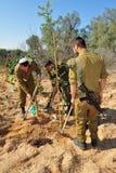 Gli israeliani celebrano la festa ebrea del Tu Bishvat Immagine Stock