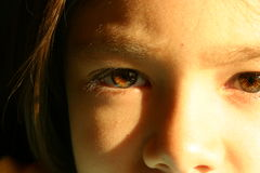 Gli occhi del Brown di una ragazza di otto anni Immagini Stock Libere da Diritti