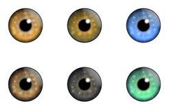Gli occhi delle collezioni del simbolo illustrazione di stock