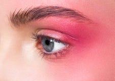 Gli occhi di rosa di trucco di bellezza si chiudono su pelle ritoccata fotografia stock