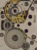 Gli orologi d'annata delle donne del movimento a orologeria Fotografia Stock Libera da Diritti