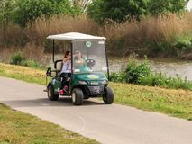 Gli ospiti guidano lungo un percorso del veicolo elettrico nella riserva naturale del lago hula vicino allo stabilimento dell'ala immagine stock libera da diritti