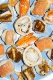 Gli pseudo sushi sbagliati molto pesce hanno ordinato l'anguilla del gamberetto del granchio del calamaro Fotografia Stock