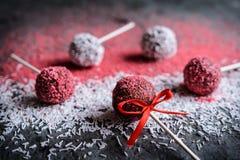 Gli schiocchi del dolce di cioccolato decorati con spruzza Fotografie Stock Libere da Diritti