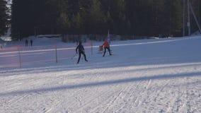 Gli sciatori, uomini, donne, adulti, sci di fondo dei bambini dentro hanno nevicato nel paesaggio Russia dell'inverno video d archivio
