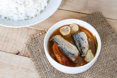 Gli sgombri piccanti dell'alimento tailandese pescano, sgombri inscatolati yum di Tom in salsa al pomodoro sul picchiettio della  fotografia stock libera da diritti