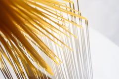 Gli spaghetti stanno verticalmente nell'ambito della luce solare su un bianco Fotografia Stock