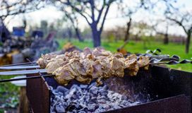 Gli spiedi crudi da carne di tacchino sono cucinati su una fine della griglia del carbone su un giorno di estate soleggiato in na fotografie stock
