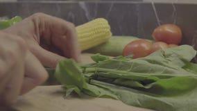 Gli spinaci di taglio del cuoco unico sul tagliere stock footage