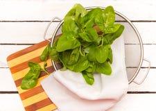 Gli spinaci freschi lasciano la merce nel carrello immagini stock