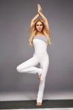 Gli sport di yoga della donna indossano l'atleta della raccolta di salute di forma fisica della palestra Fotografia Stock Libera da Diritti