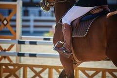 Gli sport equestri fotografia stock