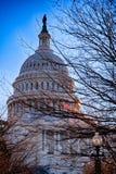 Gli Stati Uniti Campidoglio, U.S.A. Fotografie Stock Libere da Diritti