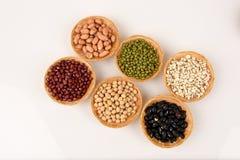 Gli strappi del lavoro, fagioli della soia, fagioli rossi, fagioli neri, arachide, pinolo, mandorla e fagiolini Fotografia Stock Libera da Diritti
