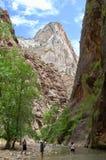 Gli stretti a Zion National Park immagine stock libera da diritti