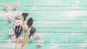 Gli strumenti di giardino ed i fiori rosa teneri su turchese dipinto corteggiano Fotografie Stock Libere da Diritti