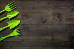 gli strumenti di giardino verdi per la piantatura fiorisce sullo spazio di legno di vista superiore del fondo della tavola per te Immagini Stock Libere da Diritti