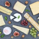 Gli svizzeri del piatto del vassoio del bordo del formaggio impanano l'ardesia quadrata del camembert a Fotografia Stock Libera da Diritti