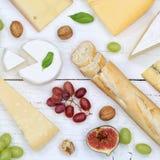 Gli svizzeri del piatto del vassoio del bordo del formaggio impanano la vista superiore quadrata del camembert Fotografie Stock