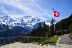 Gli svizzeri diminuiscono con le montagne ricoperte neve dietro Immagini Stock Libere da Diritti