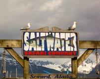 Gli uccelli che si appollaiano su un ` s della società di charter di pesca firmano al seward Immagini Stock Libere da Diritti