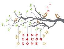 Gli uccelli di amore su una filiale di albero con la risata in tensione amano Immagini Stock