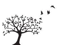 Gli uccelli di volo sul vettore dell'albero, le decalcomanie della parete, uccelli profilano, uccelli sul ramo, Art Design, decor illustrazione vettoriale