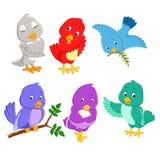 Gli uccelli graziosi della raccolta con colore e la posa differenti illustrazione vettoriale