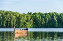 Gli uccelli si sono appollaiati su un peschereccio in un lago della foresta Immagini Stock Libere da Diritti