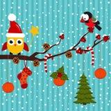 Gli uccelli stanno celebrando il Natale nella foresta Immagine Stock Libera da Diritti